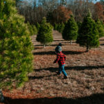 little boy running in between Christmas trees